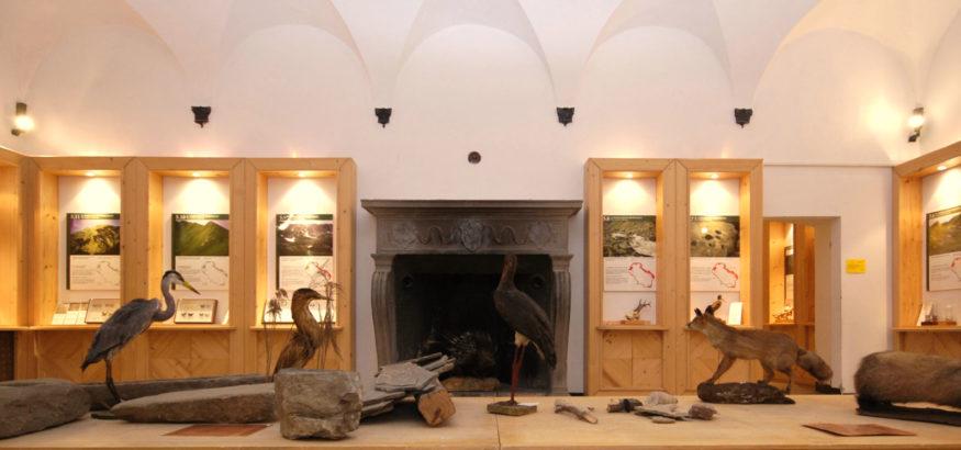 Museo di Storia Naturale della Lunigiana
